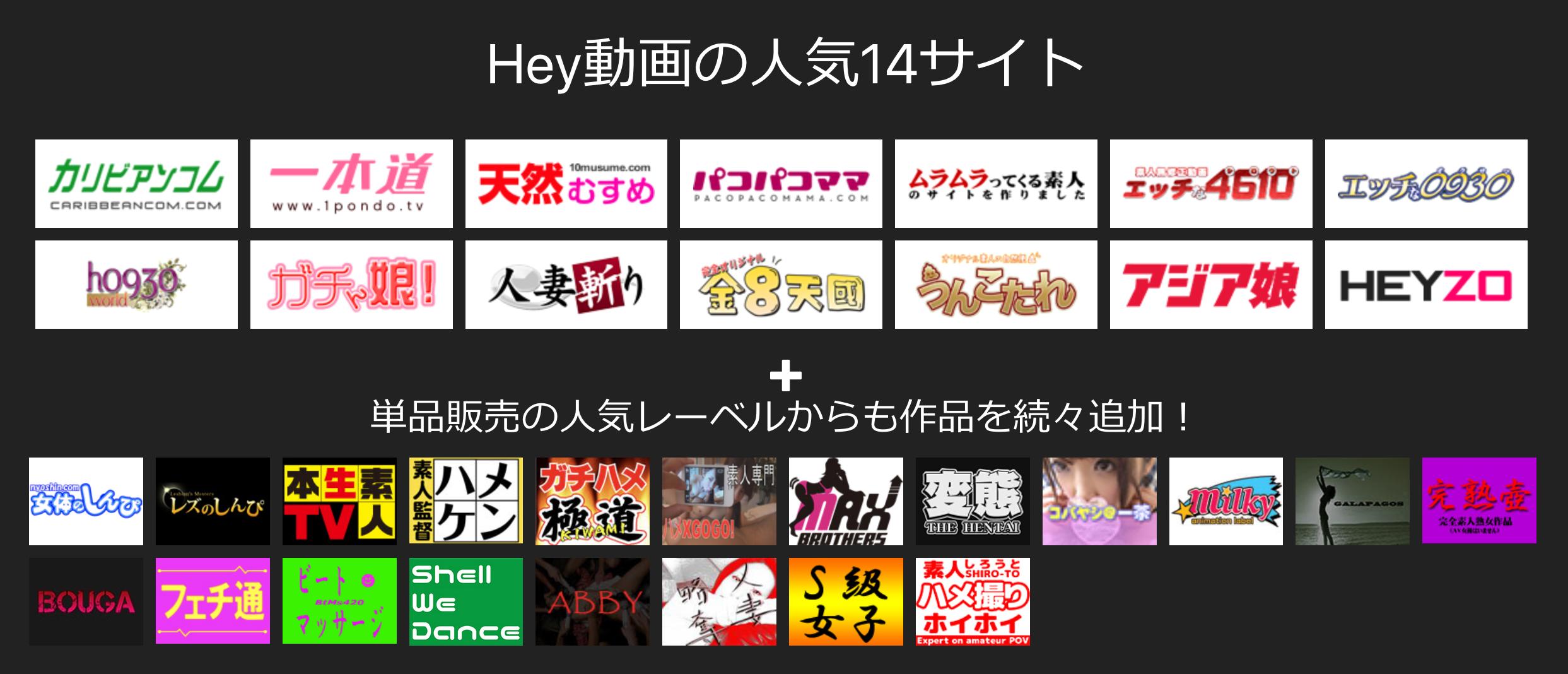 Hey動画見放題プランの視聴可能サイト
